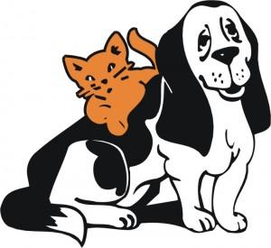 vitamina b12 cani gatti